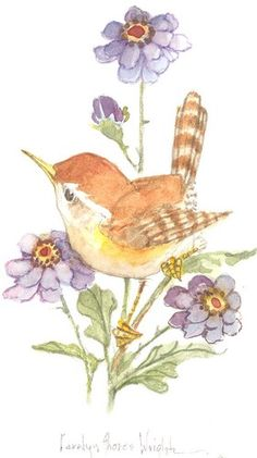 Wren with Purple Petals 5x3 watercolor  | CShoresInc - Painting on ArtFire