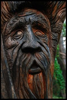 The green man of the wood by Demonoftheheavens