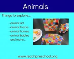 Discover ideas for exploring animals in preschool!