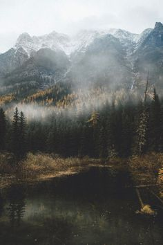 Mist over a mountain forest lake. Landscape Photography, Nature Photography, Photography Tips, Mountain Photography, Photography Magazine, Digital Photography, Editorial Photography, Beautiful World, Beautiful Places