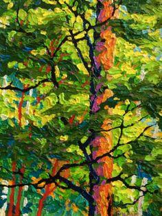 Gaze-Hart Prairie II, 14 x 11, oil on canvas by Frank Balaam at a Scottsdale art gallery