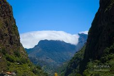 Clouds acting like a blanket (tags: #madeira #photography #travel #madex #donamaro)