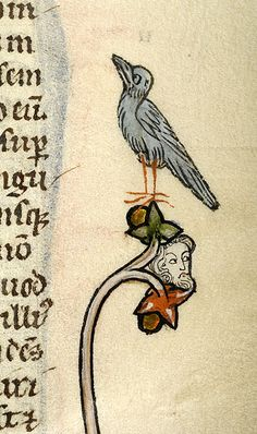Bird and male head | Bible | Northeastern France | during last quarter of the 13th century | The Morgan Library & Museum