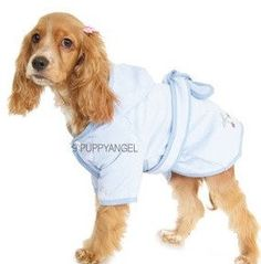 Blue dog hooded bathrobe with a belt. Made by Puppy Angel. Pet Fashion, Blue Dog, Fashion Boutique, Berries, Angel, Puppies, Pets, Stylish, Cherry