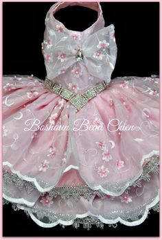 Party dress, embroidered organza fabric, silver applique in the hem of the skirt, jewel in the waist SMALL Neck: 11-12 Girth: 14-17 Long: 15 $90.00 Delivery take around 4 weeks.