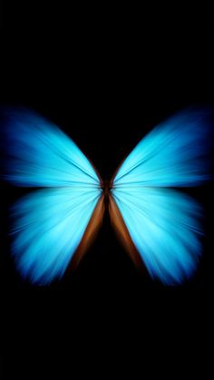 Contrast wallpaper for your iPhone XS Max from Everpix - Hercules Post Galaxy Phone Wallpaper, Wallpaper Space, More Wallpaper, Butterfly Wallpaper, Tumblr Wallpaper, Blue Butterfly, Wallpaper Backgrounds, Iphone Wallpaper, Black Background Wallpaper