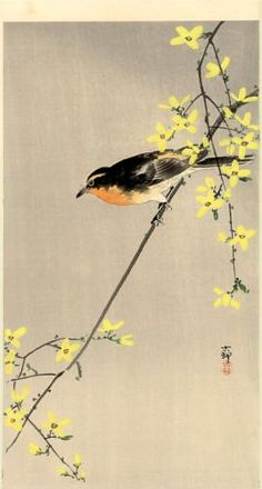 Orange-Breasted Bird - Ohara Koson