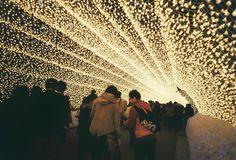 iluminacje_japonia_6.jpg (1024×697)