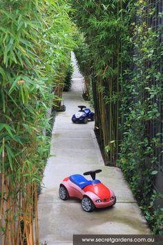 modern courtyard garden design in randwick Narrow Garden, Side Garden, Garden Spaces, Garden Plants, Bamboo Garden, Leafy Plants, Bamboo Fence, Tahiti, Landscape Design