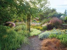 Nackt  Suthi Picotte Garden