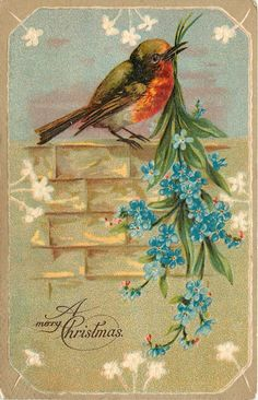 Beautiful! Vintage Christmas Card ~ Orange-Breasted Bird