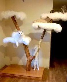 Past Luxury cat Trees