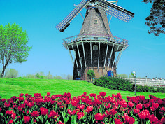 The Tulip Time Festival beckons in the city of Holland.