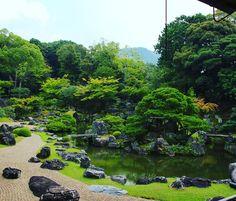 #醍醐寺 #京都 #三宝院 #三宝院庭園 #秀吉 #daigoji #hideyoshi #kyoto