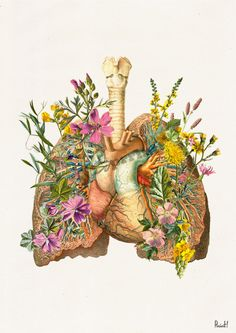 Doctors gift Lungs and heart with flowers Print A4 Wall by PRRINT