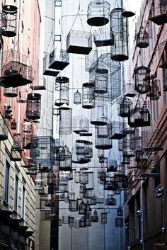 """Instalação urbana de Michael Hill em Sidney, na Austrália entitulada """"Forgotten Songs"""". Eram 180 gaiolas vazias tocando os sons de 50 pássaros que um dia viveram na cidade."""