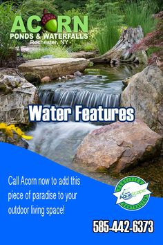 Read details about how local pond builders/contractors Acorn Ponds & Waterfalls design & build backyard fish (Koi) ponds and water gardens in the Rochester (NY) Area. Waterfall Design, Pond Waterfall, Ponds Backyard, Backyard Landscaping, Rochester New York, Fish Ponds, Water Features In The Garden, Garden Fountains, Water Garden