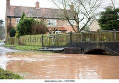 March becks in the villages of Oxton ,and Gonalston have burst their - Stock Image Garden Bridge, Bears, March, Outdoor Structures, Image, Bear, Mac