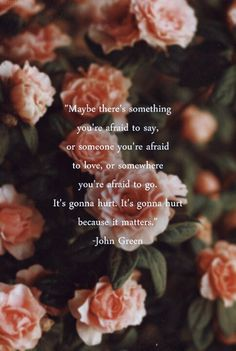 """Maybe there's something you're afraid to say, or someone you're afraid to love, or somewhere you're afraid to go. It's gonna hurt. It's gonna hurt because it matters."" -Will Grayson, Will Grayson by John Green"