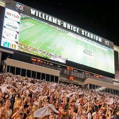 Carolina.... Williams Brice Stadium #Gamecocks | Forever ...