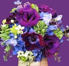 Awesome Purples and Blue