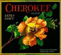Highland San Bernardino Cherokee Rose Orange Citrus Fruit Crate Label Art Print #Cherokee