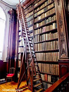 The Amazing and Unique Library at Saint Omer : The Good Life France