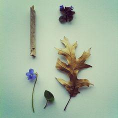 Flower Bones