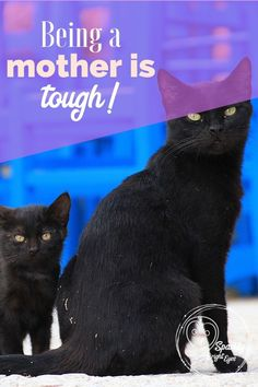 Being a mother is tough some days! Real tough! You just want to give it up, throw in the towel and go do something less stressful.  #motherhood #parenting #mums #SparklyBrightEyes  www.brighteyes77au.com