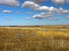Redberry Lake Biosphere Reserve  #Saskatchewan