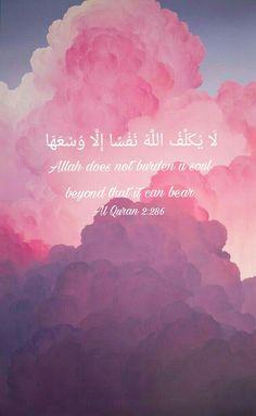 ♡ Quran verses