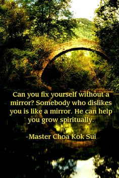 Mirrors #growth works with other things too, i.e. with opinions