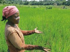 """""""My Beautiful Rice"""" Appeal : Oxfam GB  I was honoured to meet Suzanna, what a lady. What a country. January 2014."""