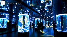 「マリンスノウ」をモチーフにした、体験型イベント『SNOW AQUARIUM BY NAKED』が開催中の「エプソン アクアパーク品川」。 【期間限定】都会の真ん中に「雪が降る水族館」がオープン!2015 Aquariums, Marina Bay Sands, Perspective, Aesthetics, Snow, Building, Interior, Tanked Aquariums, Indoor