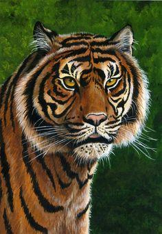 Malcolm Brown (ravenscar45 on DeviantArt) | ACRYLIC | Tiger
