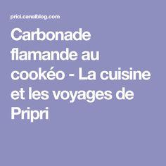 Carbonade flamande au cookéo - La cuisine et les voyages de Pripri