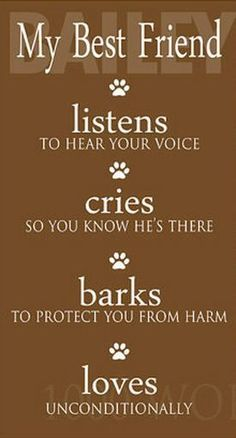 That's the nature of #dogs #quote #dogquote http://www.petrashop.com/
