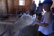 133rd Bolton Agricultural Fair-Aug. 14-16th