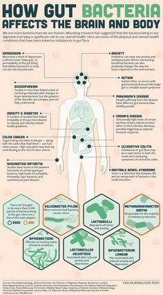 What The Bacteria In Your Stomach Have To Do With Your Physical And Mental Health