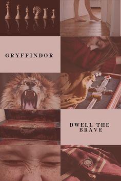 hogwarts houses: 4/4 gryffindor