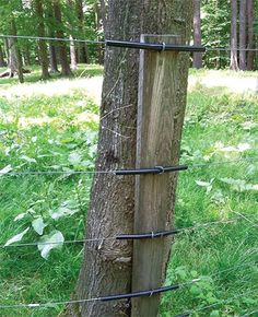 Fenceposts have always baffled me. Why would anyone take a perfectly good tree cut it down dig a hole to set it in and then spend the next 20 years watching it decay? Pasture Fencing, Horse Fencing, Farm Fence, Ranch Fencing, Deer Fence, Fence Gate, Fence Panels, Farm Projects, Living Fence