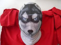 found on Dog Brothers Public Forum: Fencing Masks