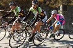 Saison 2014 : Wallonie-Bruxelles confirme son effectif #transfert   Cyclisme PRO   Scoop.it