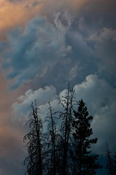 Thunderstorm - Sawtooth National Forest, Idaho Sawtooth Mountains, Wild Weather, Beautiful Disaster, Sky And Clouds, Natural Phenomena, Thunderstorms, Ciel, Nature Pictures, Amazing Nature