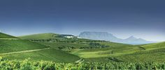 Durbanville Hills - Table Mountain on the horison. Dream City, My Dream, Best Hospitals, Table Mountain, Shopping Center, Cape Town, Countryside, Vineyard, Southern
