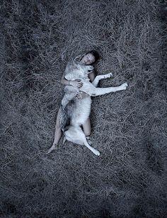 wolf | wild & free | animal kingdom | mans best friend | birds eye view | naked with nature | furry friend | haystack