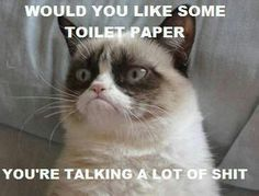 Grumpy Kitteh . . .  you talking poo