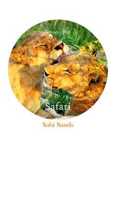 @calvendo Safari, Travel Report, Africa, Calendar, Pictures