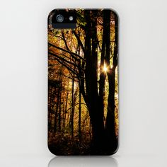shadows into light iPhone Case by Sylvia Cook Photography - $35.00