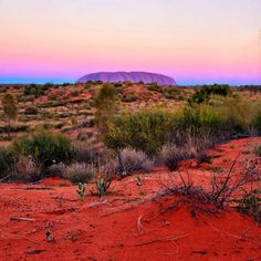 #Sunset transforms the colours of Australia's #Outback. Photo: #jewelszee_